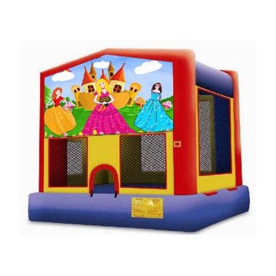 Inflatable Princess Bouncer-medium
