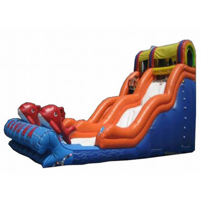 Daphne Party Slide