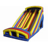 Inflatable Double Lane Dry Slide