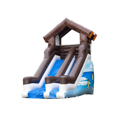 Inflatable Winter Slide