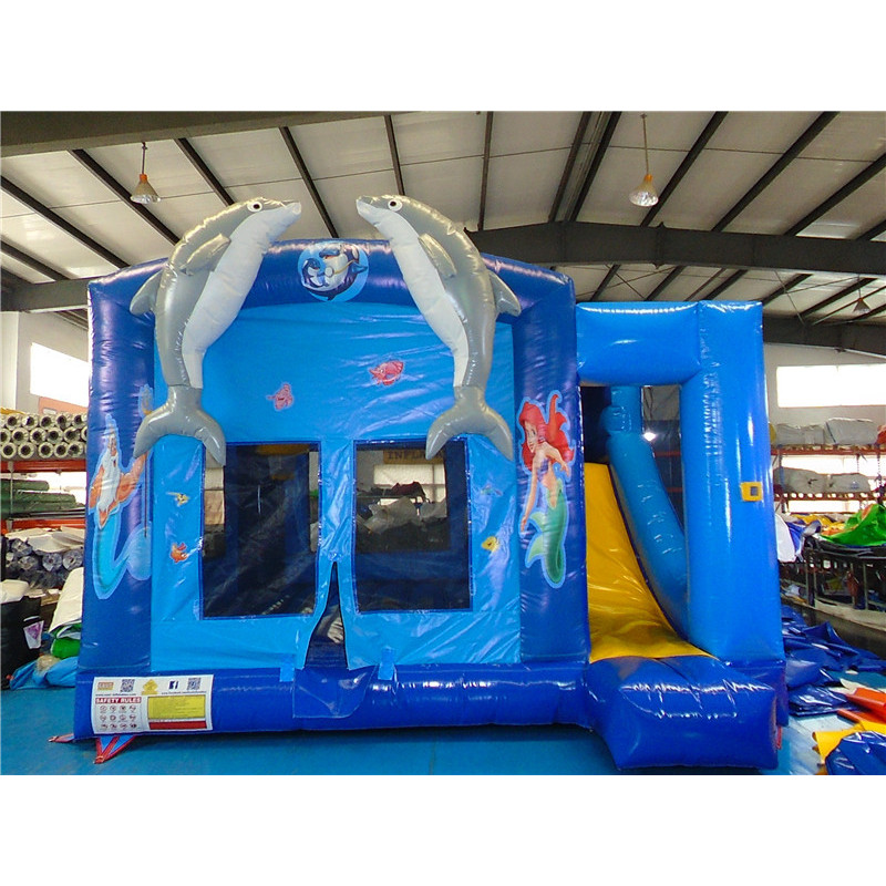 Dolphin Bouncy With Slide
