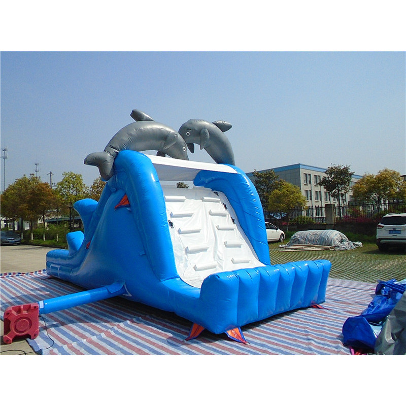Inflatable Dolphin Slide