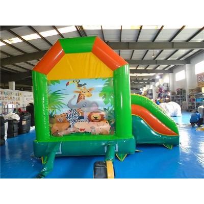 Small Indoor Bouncy Castle